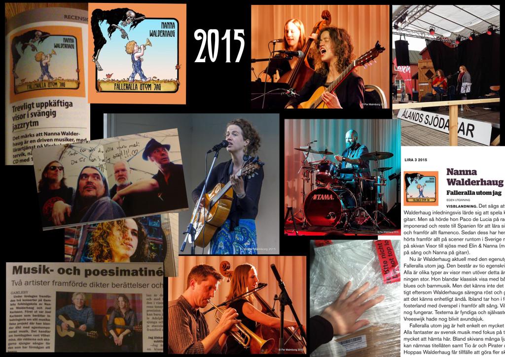 musikåret 2015